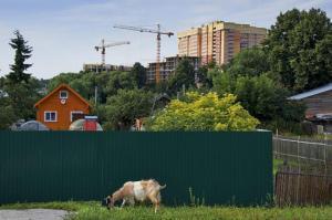 Новая Москва. Природа в столице России