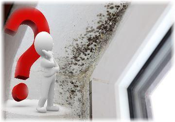 почему потеют окна пластиковые дома