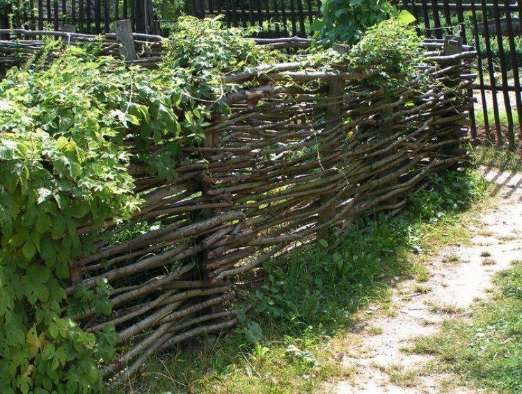 дешевый забор для дачи своими руками фото