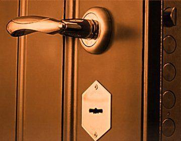входные двери фото 7