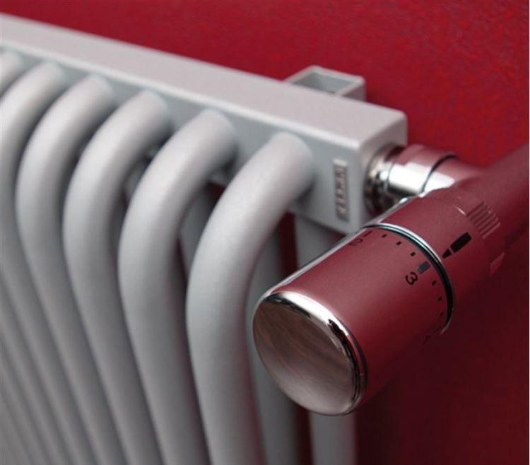 терморегулятор фото 2